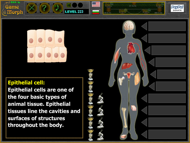 Body Cell Types Screenshot
