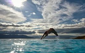 La mejor piscina en Islandia