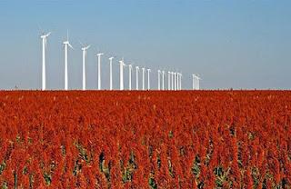 turbina eolica 5