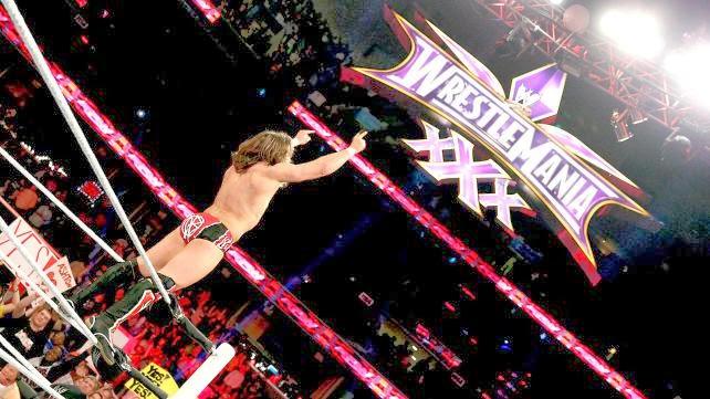 WrestleMania XXX 30 Daniel Bryan plans rumors WWE Championship match Batista Randy Orton Triple H