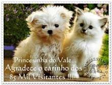 OITENTA E CINCO MIL VISITANTES !!!