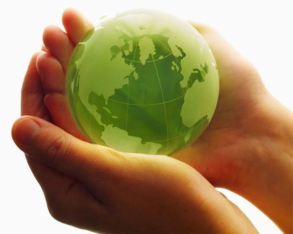 ecologia-energía