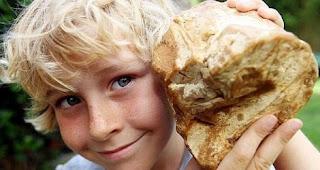 Charlie Naysmith, Temukan Muntahan Ikan Paus, Bocah SD Mendadak Kaya