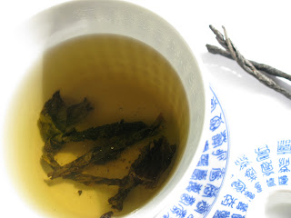 Ku Ding Cha (苦丁茶)