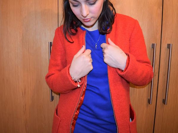 What Cat Wore | Postbox Red & Royal Blue