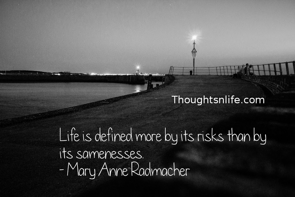 Thoughtsnlife.com : Life is defined more by its risks than by its samenesses. - Mary Anne Radmacher