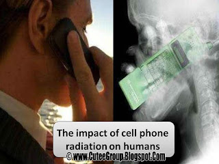 The impact of cell phone radiation on humans Important Info GSM awareness