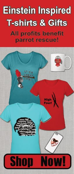 Parrot Shirts and Gifts!