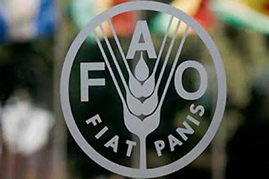 Informe de la FAO muestra impacto del bloqueo económico contra Venezuela