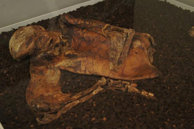 british_museum body