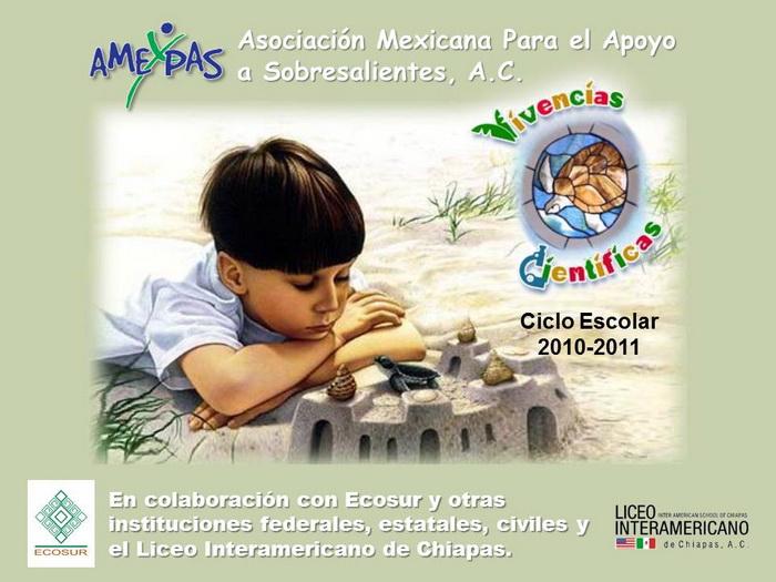 Asociación Mexicana Para el Apoyo a Sobresalientes