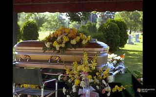 TODO+SER+HUMANO+NASCE+MORTO.jpg