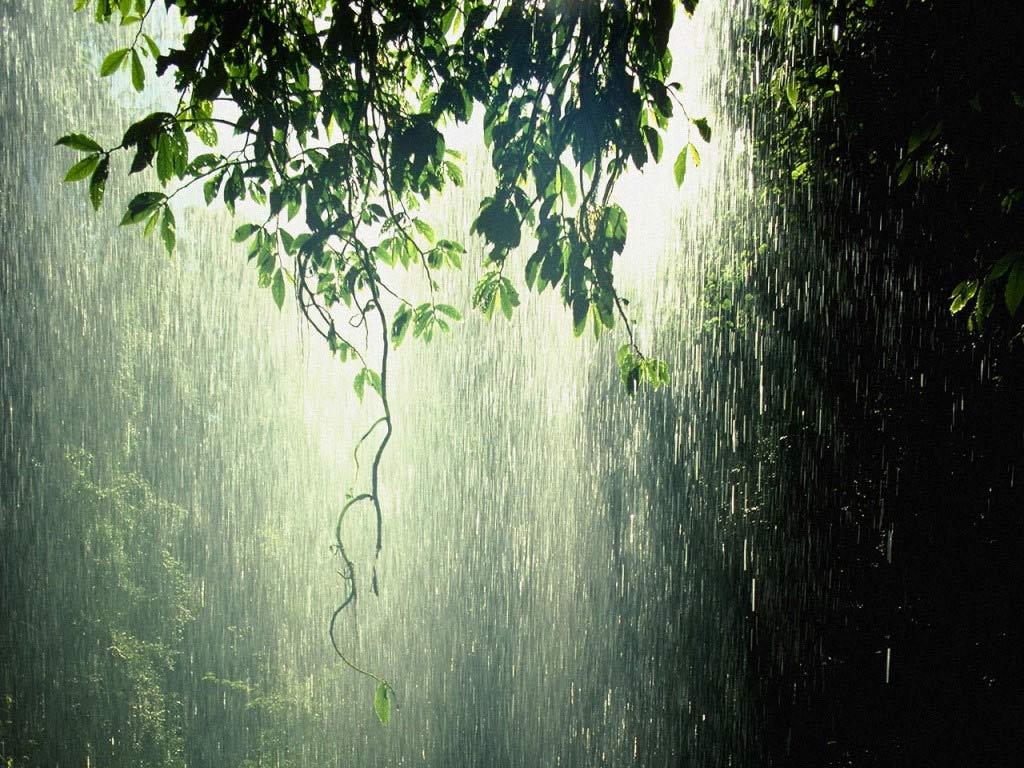 Falling Raindrops Gif revealing something new