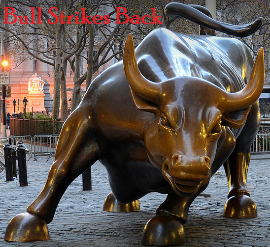 Bull Strikes Back Stocks 2014