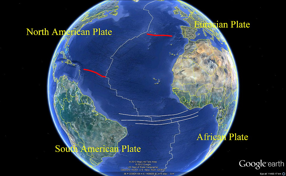 Support Plate Tectonics Chosen by Plate Tectonics