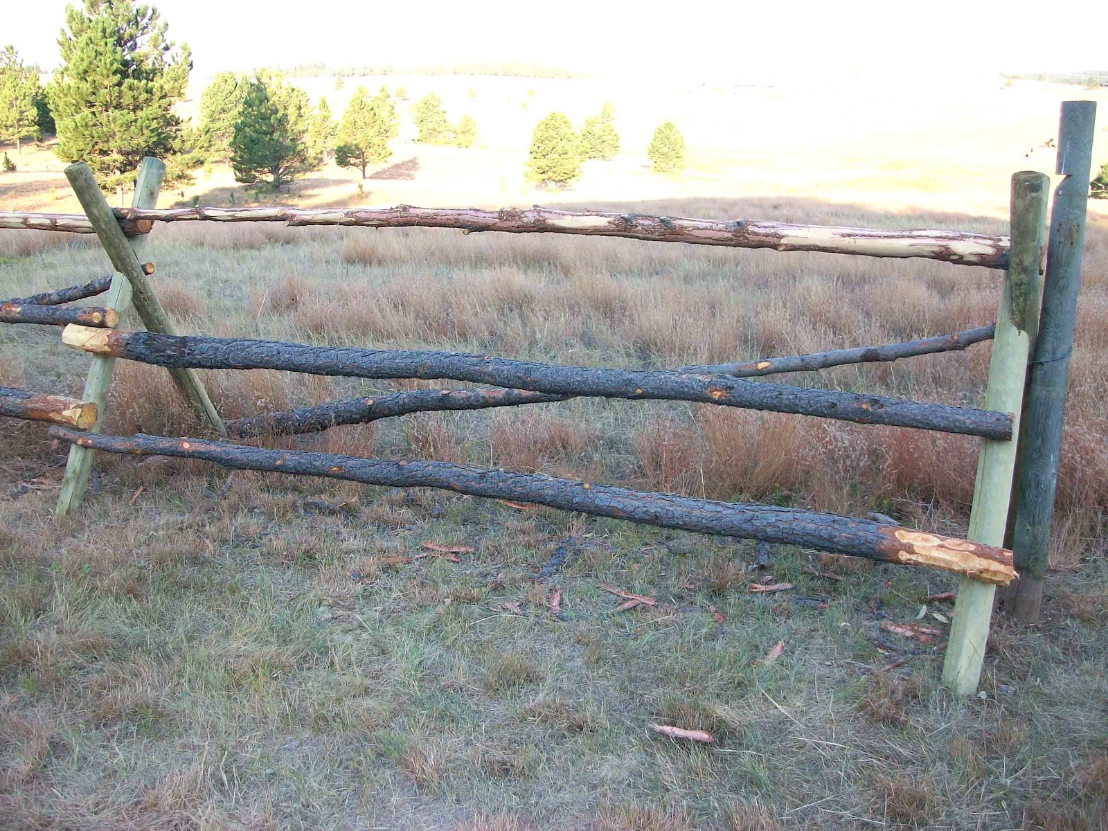 Cattle Fencing Design Homesteading wife backwoods fencing backwoods fencing workwithnaturefo