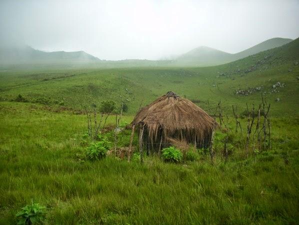 Villa Luciole à Melong - Nature - Nkongsamba
