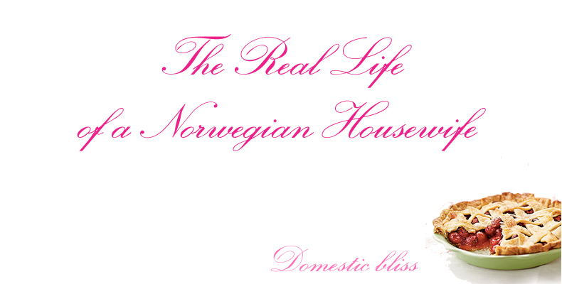 The Real Life of a Norwegian Housewife