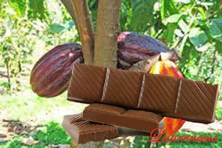 Coklat-Mencegah-Stroke