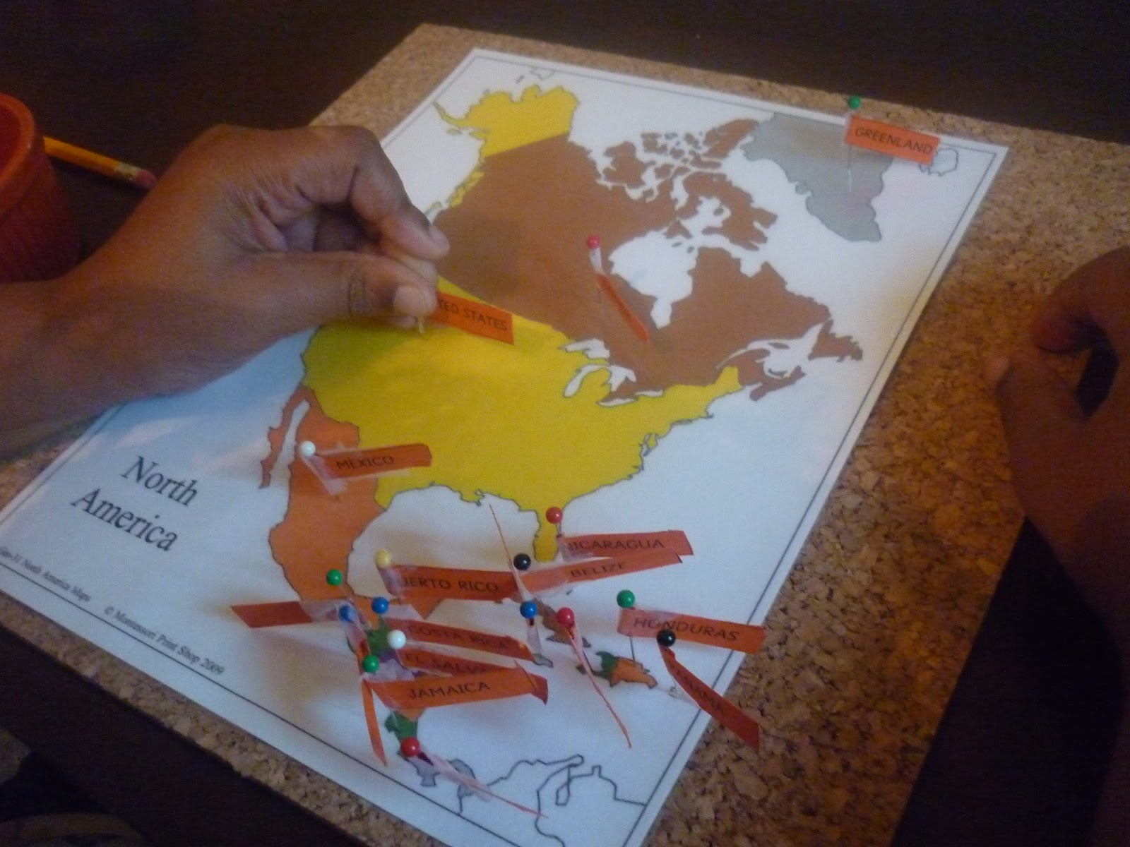 North America Pin Map Activity (Photo from We Don't Need No Education)