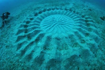 Kejadian Ajaib Di Dalam Laut