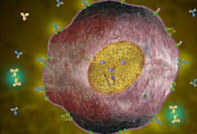 سرطان+الثدي5 تعرفي على سرطان الثدي ,مدعم بصور توضيحية