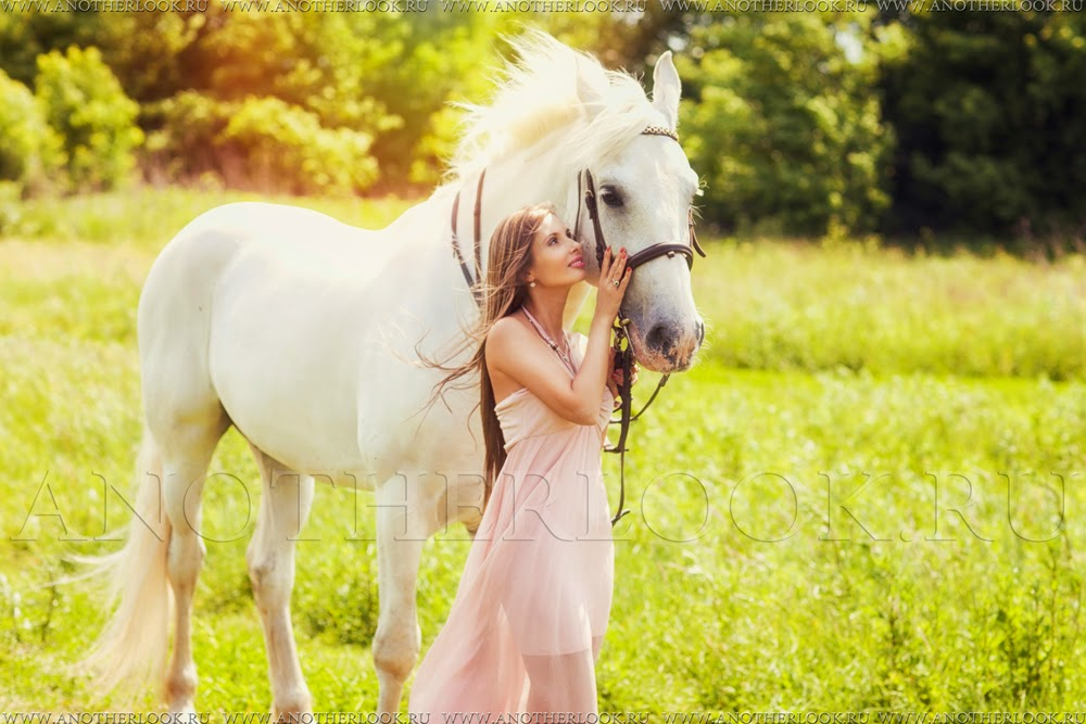 белая лошадка фото