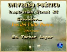 3ER. LUGAR INSP. VISUAL/ QUE CREES?