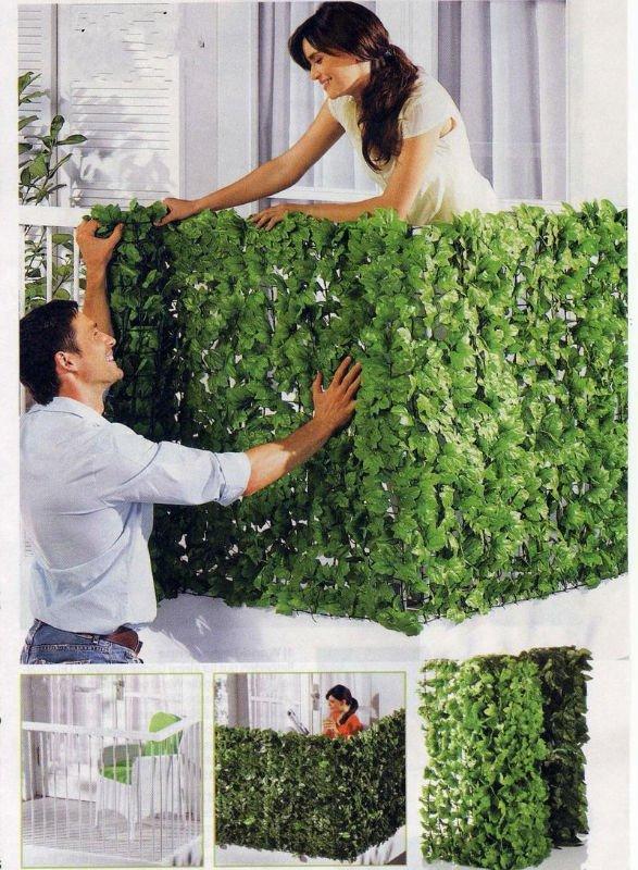 Tu organizas paredes sempre verdes Plantas para paredes verdes