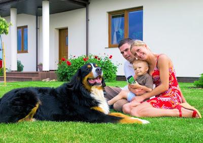Familia en el jardón con su mascota perro San Bernardo