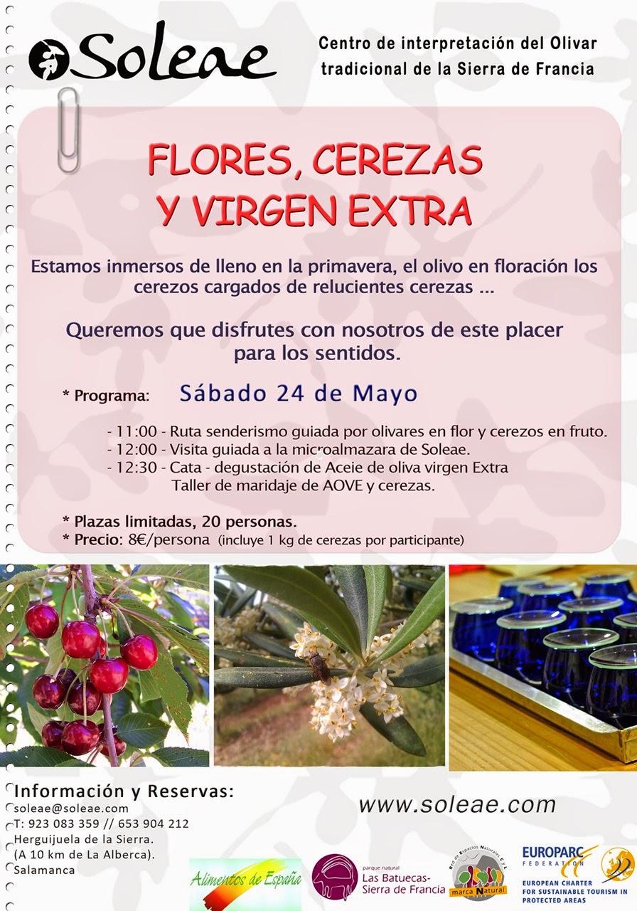 """24/mayo. Actividad guiada """"Flores, cerezas y virgen extra"""". Herguijuela de la Sierra"""