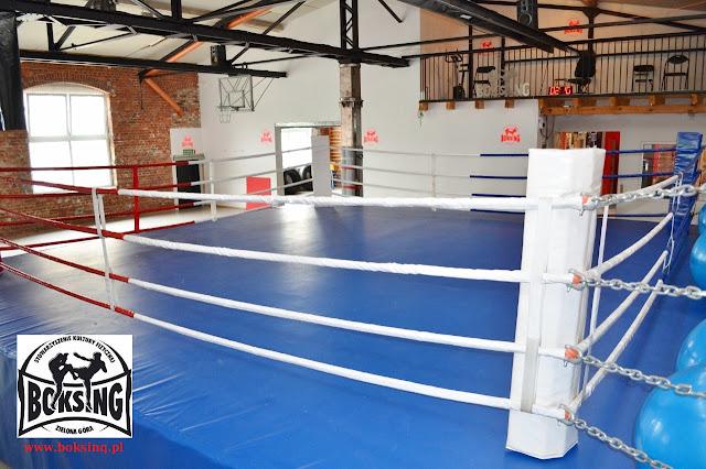 boks, kickboxing, box, muay thai, kick-box, treningi, dzieci, młodzież, dorośli, kobiety , mężczyźni, Zielona Góra