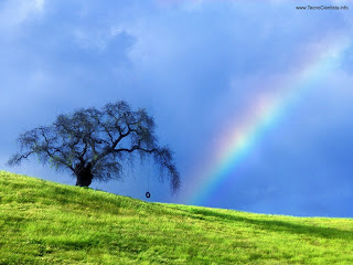 A vida é da cor que a gente pinta! – Por Karen Leão