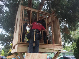 The beginning of the treehouse construction
