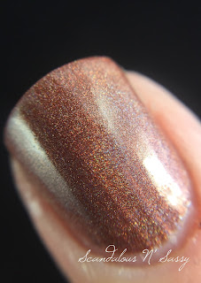 Ninja Polish Pretty Brown Nipple macro