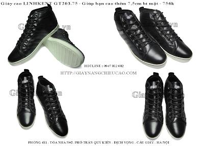 Giày nam GT203. 75