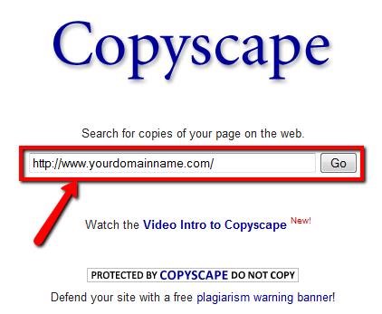 Cách chống copy bài viết