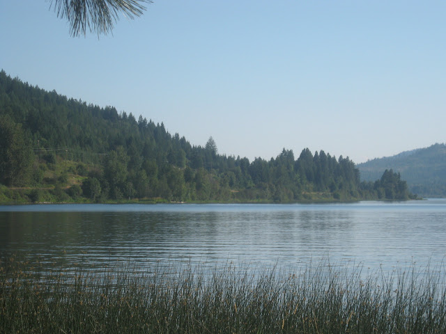 Lake Cocolalla, public access: view from the shore