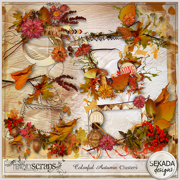 http://www.mscraps.com/shop/Colorful-Autumn-Clusters/
