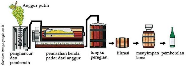 Proses pembuatan anggur
