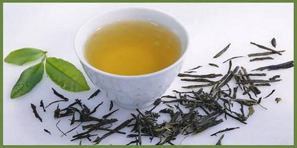 Health benefits of Drinking Kombucha Tea