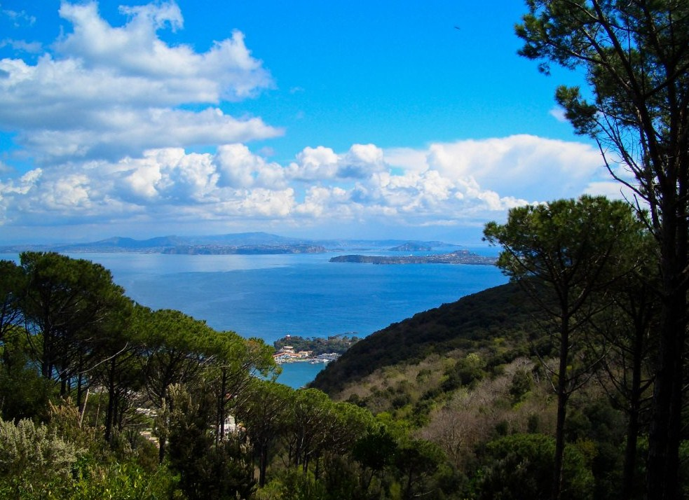 Appartamenti ischia ischia l 39 isola verde for Appartamenti ischia