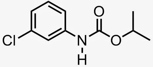 clorprofam isopropilo N-clorofenilcarbamato