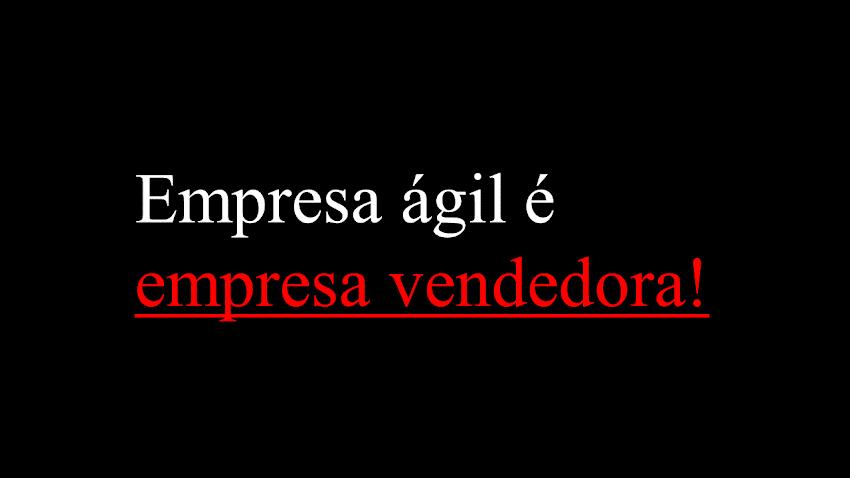 Empreendedor Ágil