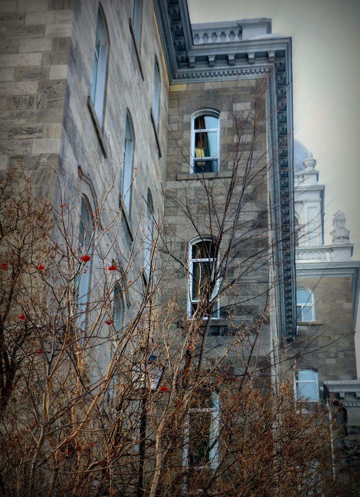 Conservatoire de Musique de Vincent d'Indy- Outrmont, Montréal, Québec, Canada Photo: Shahrzad Ghaffari,MVM, 18 FEV.2015