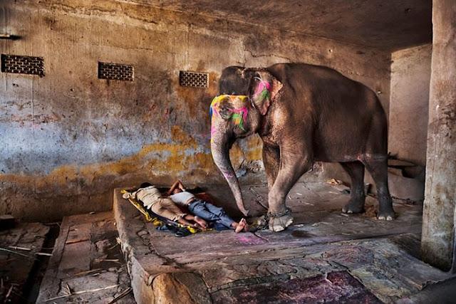 O espírito da Índia, por Steve McCurry