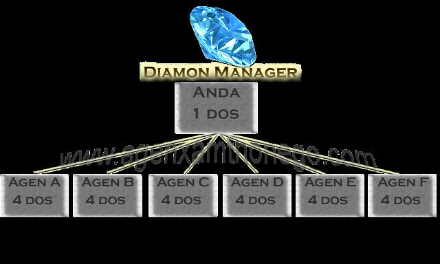 Diamond Manajer
