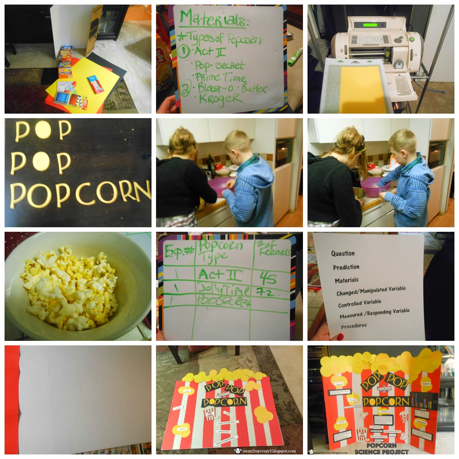 popcorn science project I think that if i popped one cup of four different brands of popcorn kernals in an electric popper, then the brand that pops the largest would be the orville.