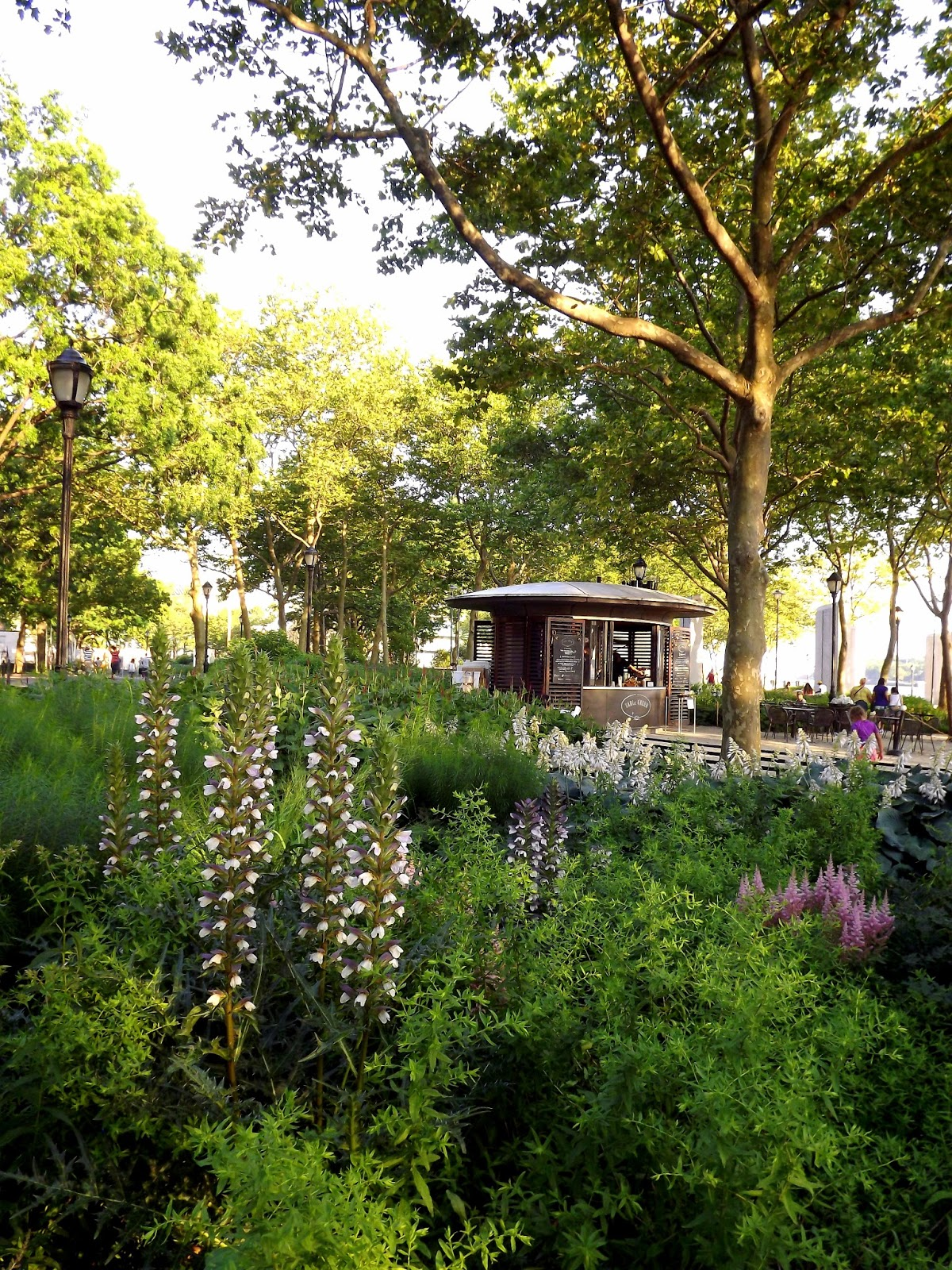 Forsythia Hill Finds New York Manhattan Gardens