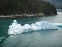 Photo of a glacial ice chunk.